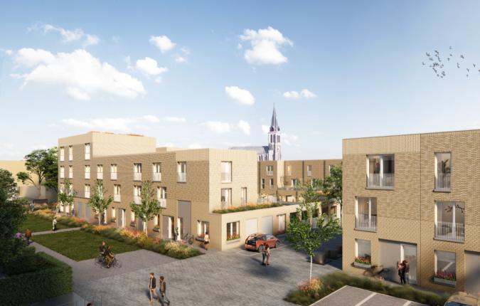 Revive Rutte Leefstraat Update Large